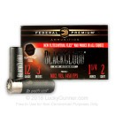 """Cheap 12 Gauge Ammo For Sale - 3"""" 1-1/4 oz. #2 Steel Shot Ammunition in Stock by Federal Black Cloud - 25 Rounds"""