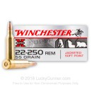 Bulk 22-250 Rem Winchester Ammo For Sale - 55 gr Soft Point Ammunition In Stock by Winchester Super-X - 200 Rounds