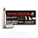 Premium 22-250 Ammo For Sale -  55 Grain Polymer Tip Ammunition in Stock Winchester Ballistic Silvertip - 20 Rounds