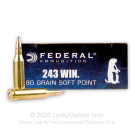 243 - 80 Grain SP - Federal Power-Shok - 20 Rounds