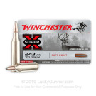 243 - 100 Grain PP - Winchester Super-X - 20 Rounds